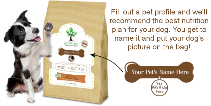 Put Your Pet's Name on the Bag